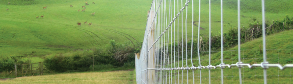Fencing Solutions for Deer & Elk