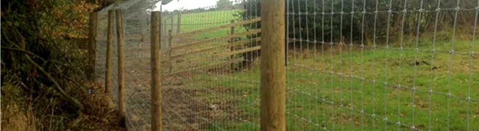 Fencing Solutions for Rabbit
