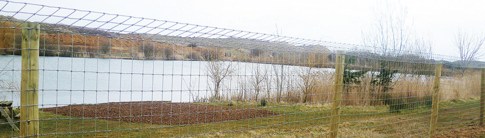 Fencing Solutions for Otters