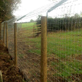 Otter Fencing You Can Trust