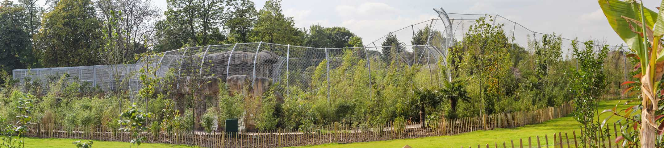 Case Studies - Channel 4 Feature State-of-the-Art Tiger Enclosure at Chester Zoo