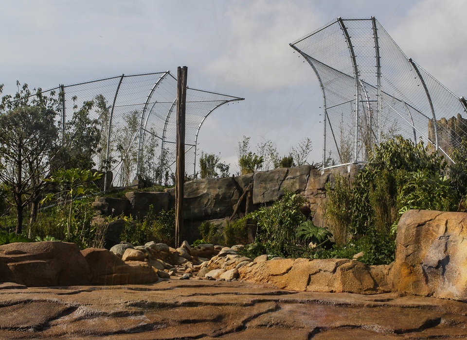 Channel 4 Feature State Of The Art Tiger Enclosure At
